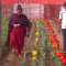 বাংলাদেশেই টিউলিপ চাষে সফল দেলোয়ার ও শেলি দম্পত্তি