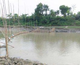 চুয়াডাঙ্গায় নদীতে বাঁধ দিয়ে অবাধে মাছ শিকার