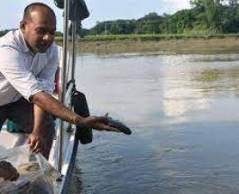 প্রথমবারের মতো হালদায় অবমুক্ত করা হচ্ছে এক লাখ মাছ